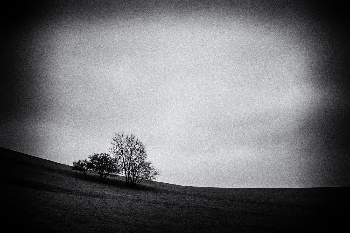 Krajinný minimalismus