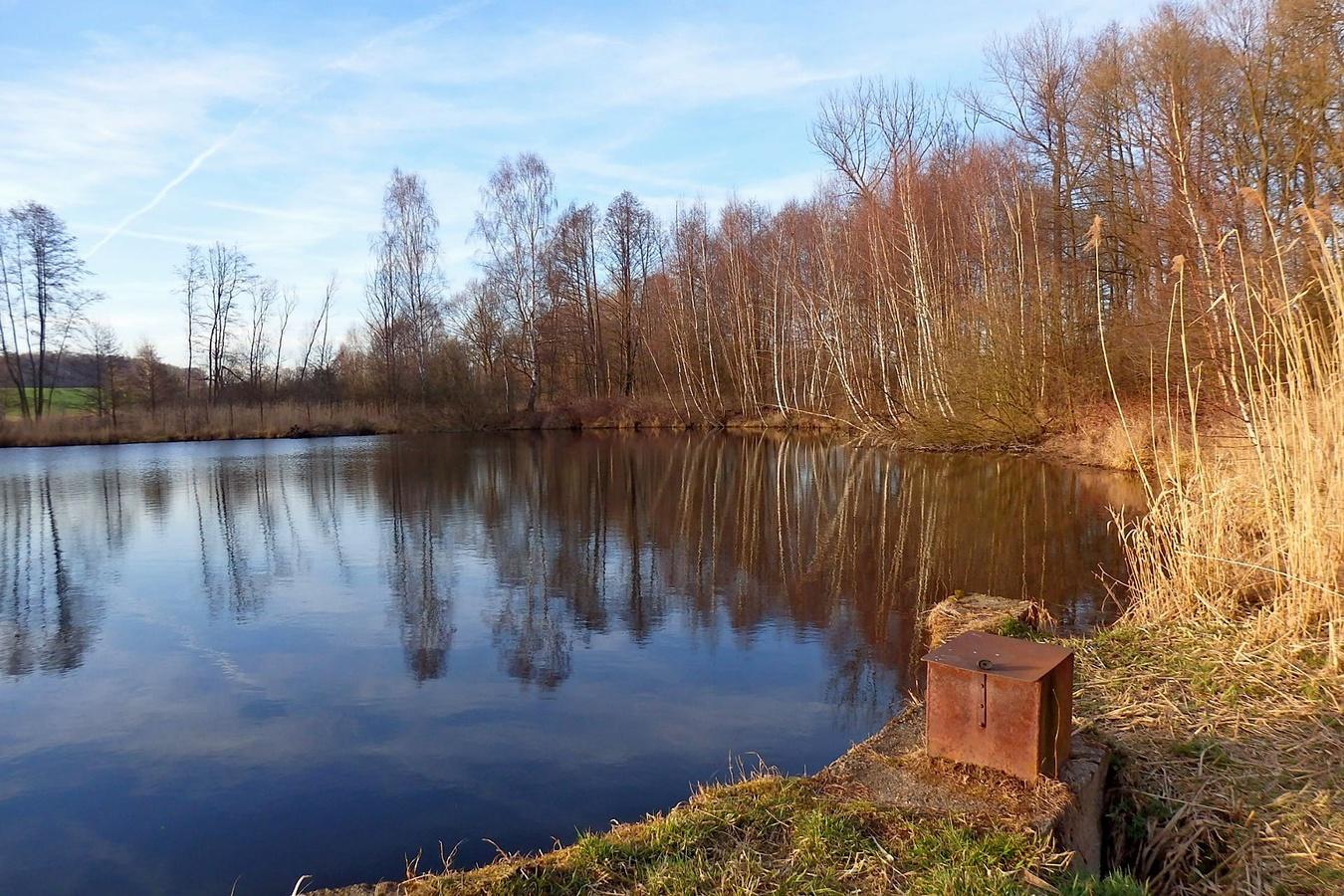 Chovný  rybník
