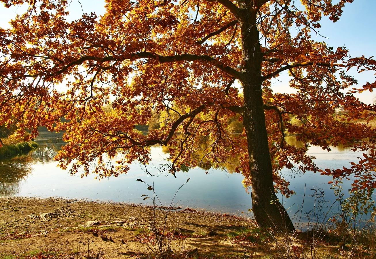 U rybníka 2