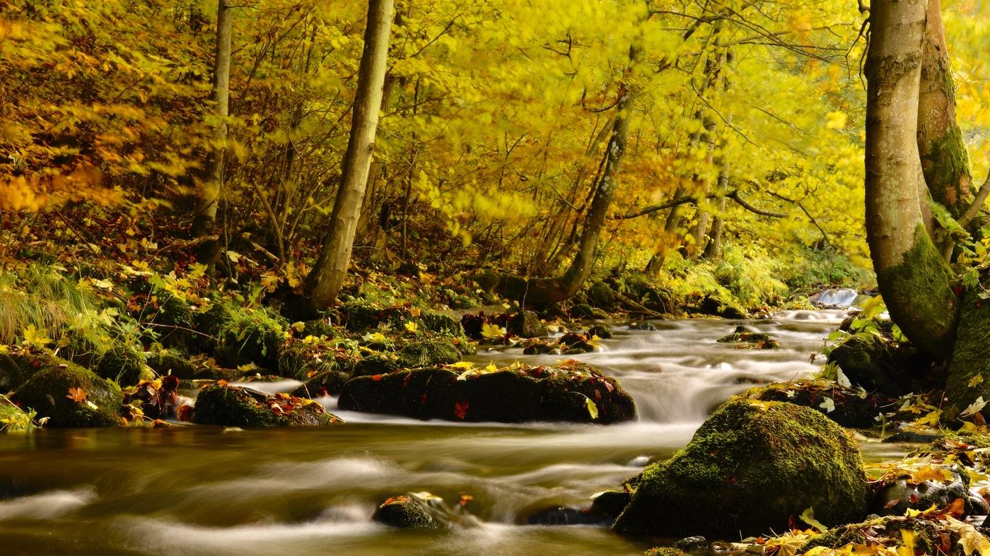 Vodopády Stříbrného potoka - Jeseník