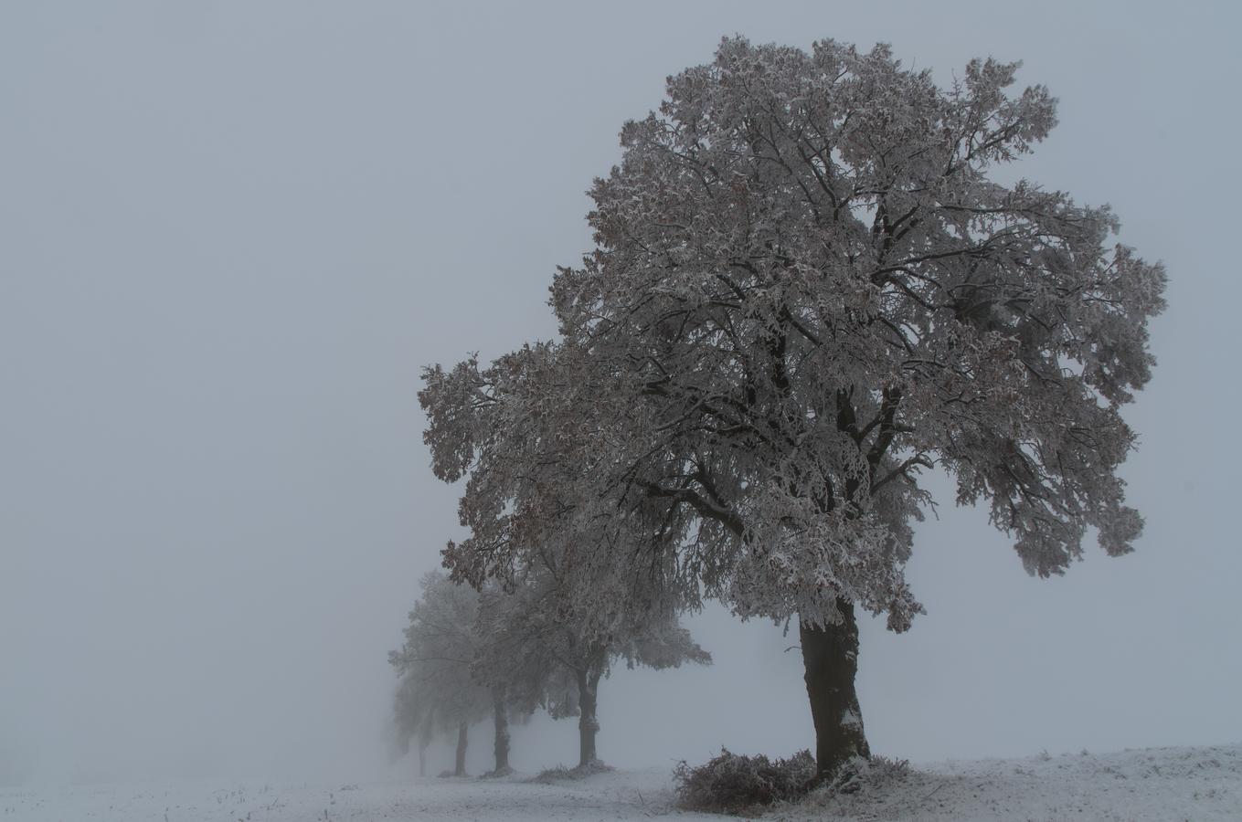 V zajetí mrazu