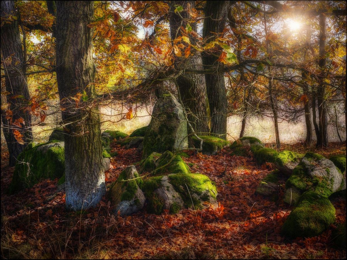 Slunce na kamenech