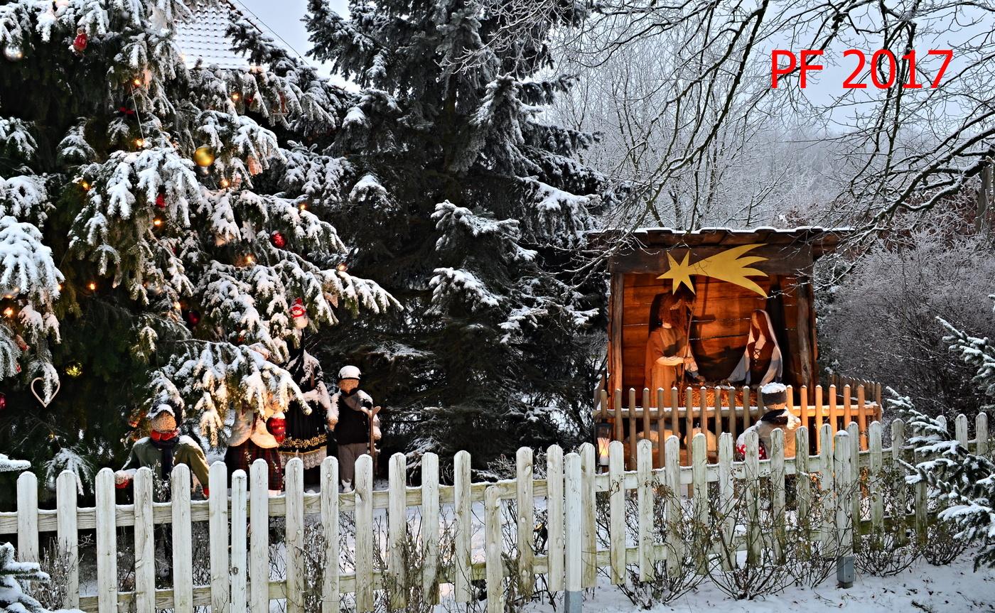 Krásné prožití vánočních svátků, všechno nejlepší a dobré světlo po celý rok