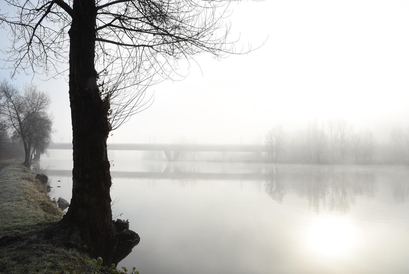 Vltavská mlhovka...