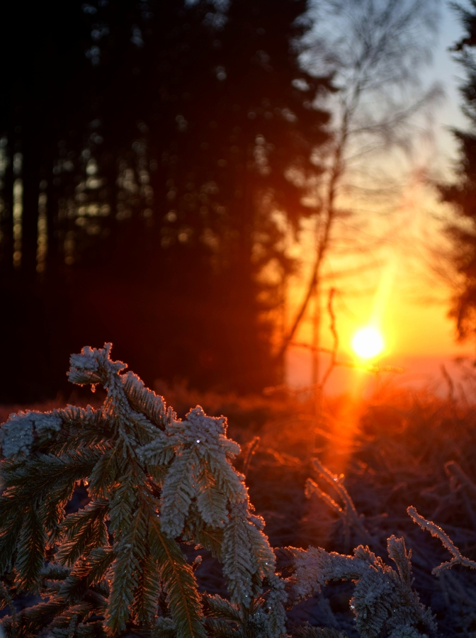 Zahřátí v zimě