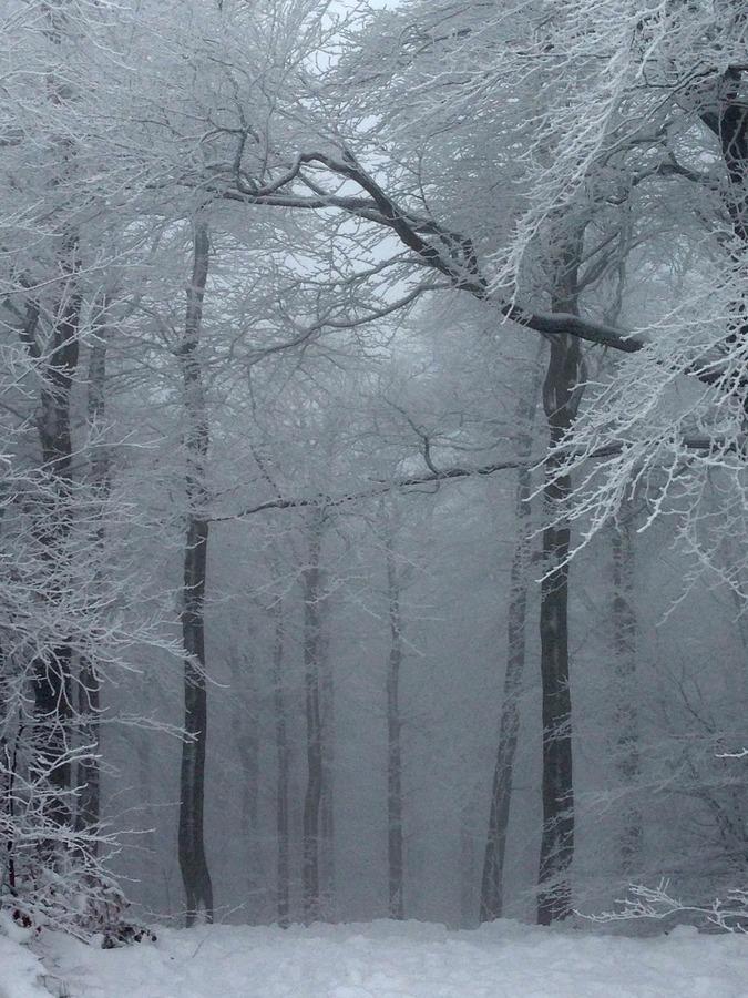 Pravá zima