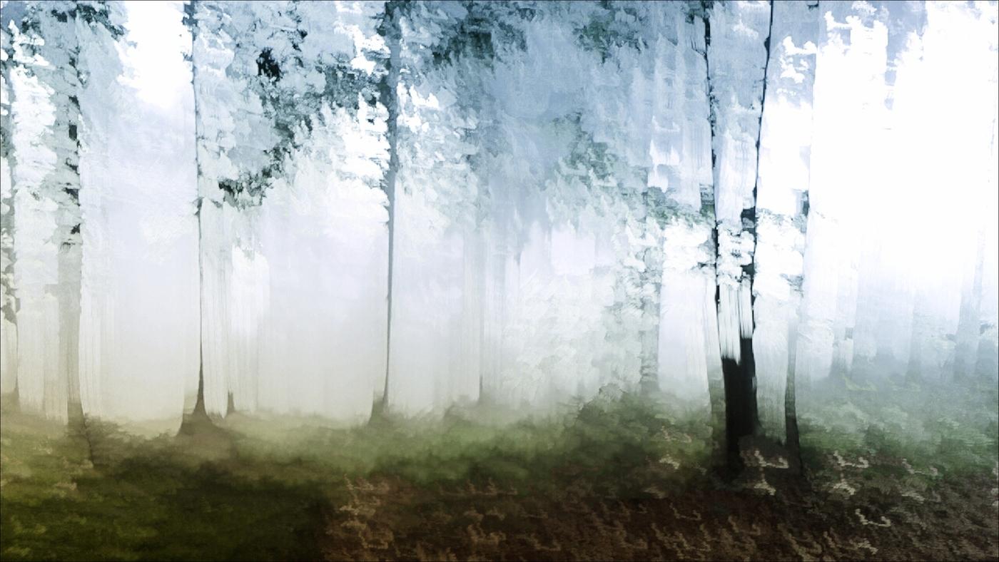 lesní II.