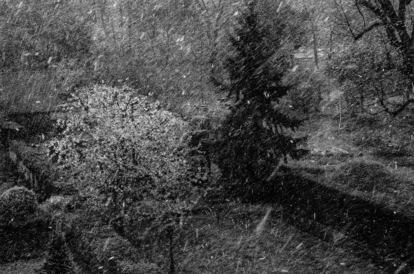 Aprílový snížek