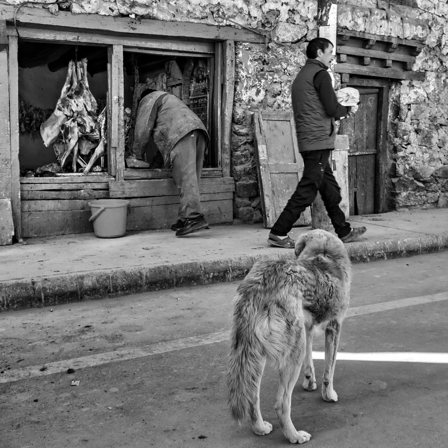 Život v ulicích Lehu IV.