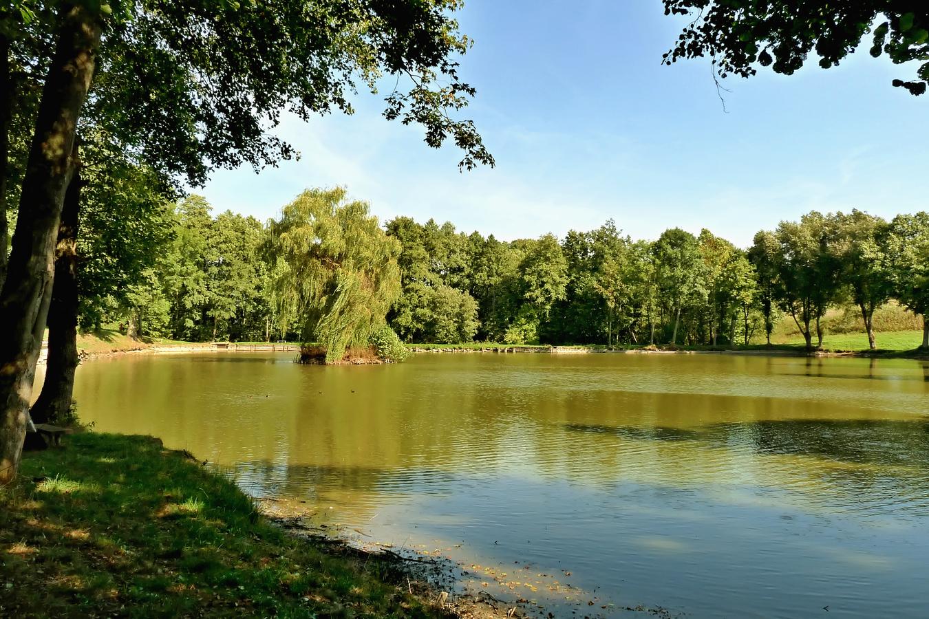 Poledne u rybníka