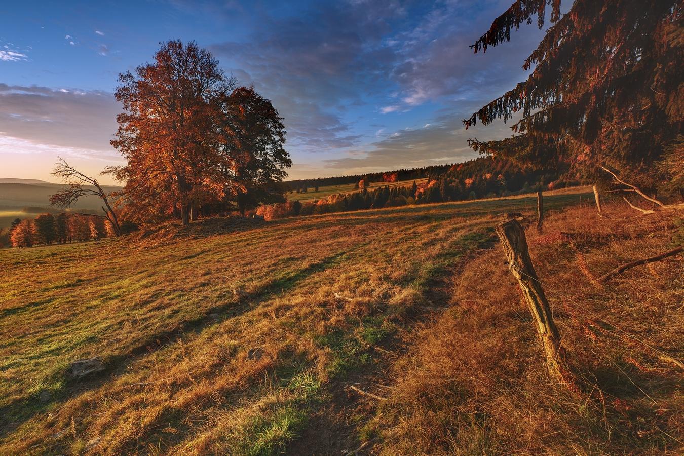 šumavská pastvina v barvách podzimu