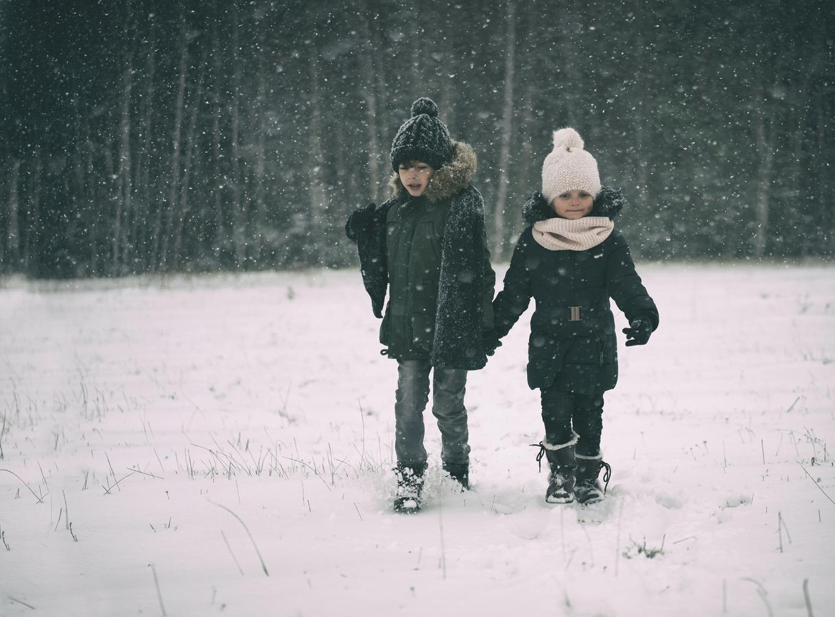 sněhová