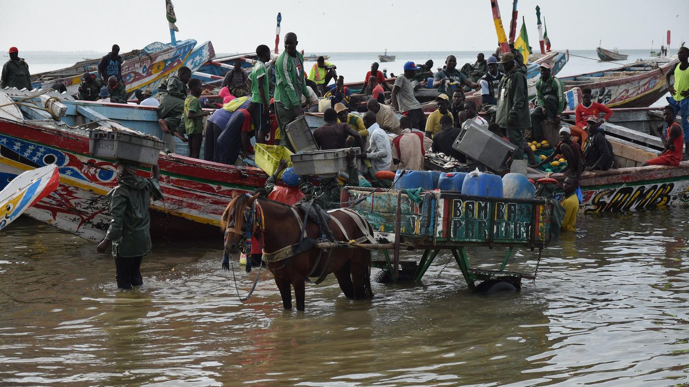 Vylodění v M'bour, Senegal