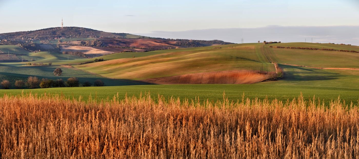 Panorama z Moravského Toskánska