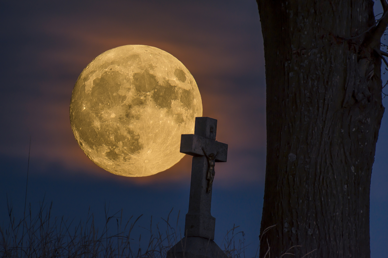 ...Měsíční chodec... Moonwalker