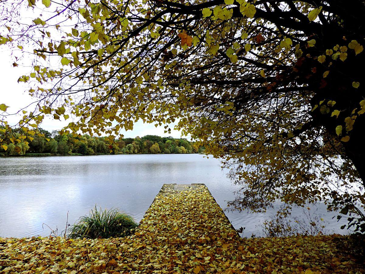 Zlute jezero