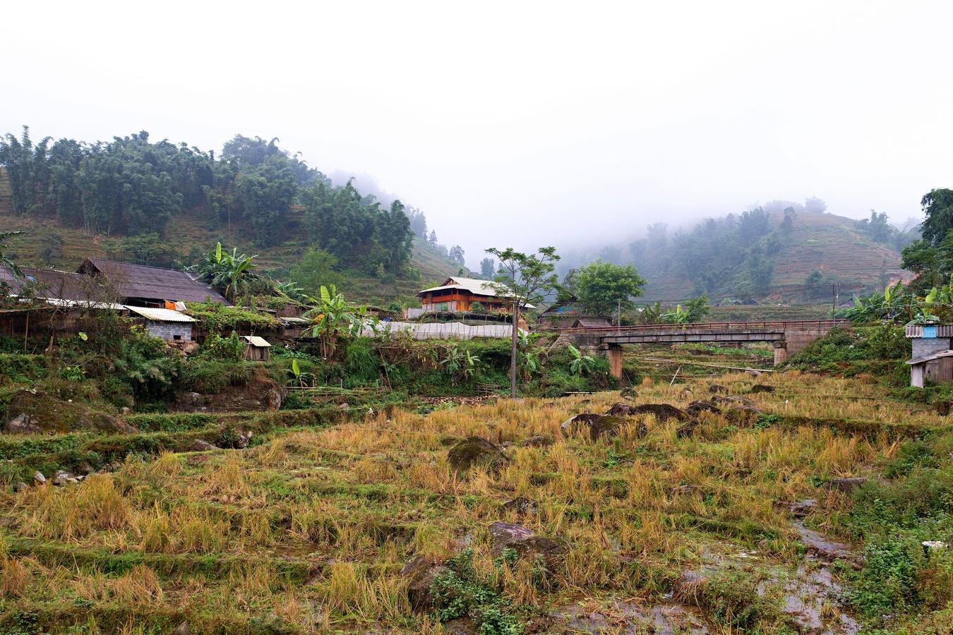 Rýžová políčka v údolí Muong Hoa