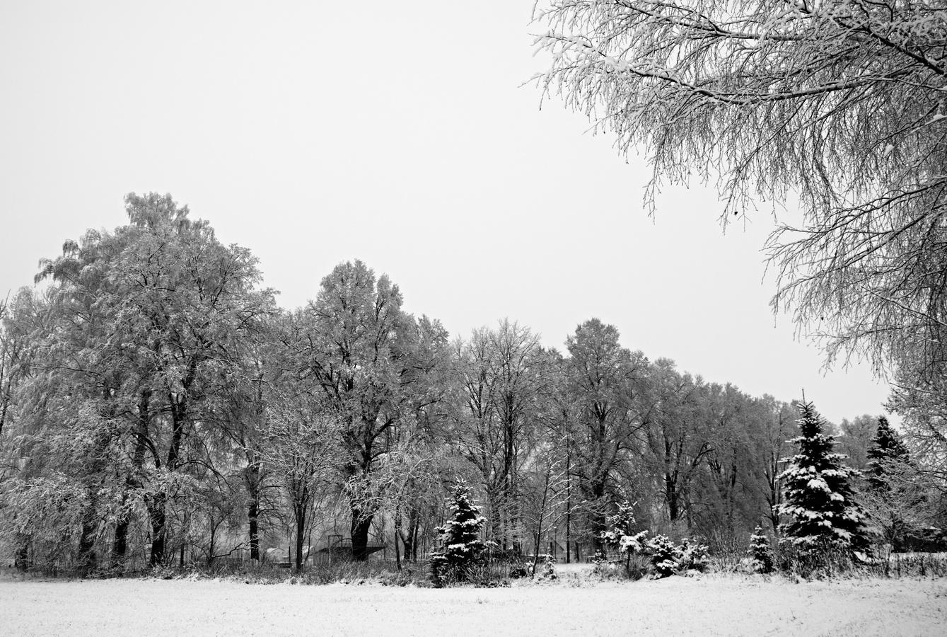 Zima začíná