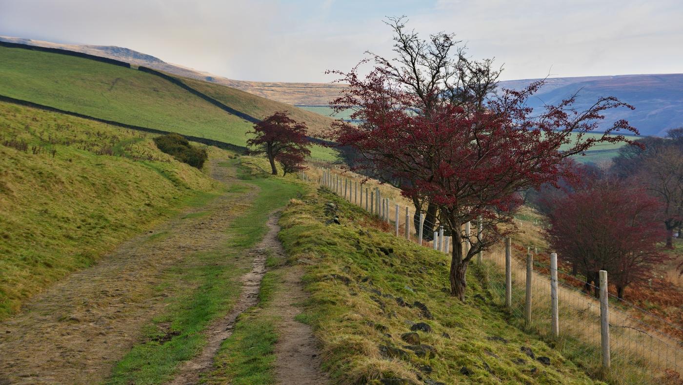 Derbyshire Scenery II.