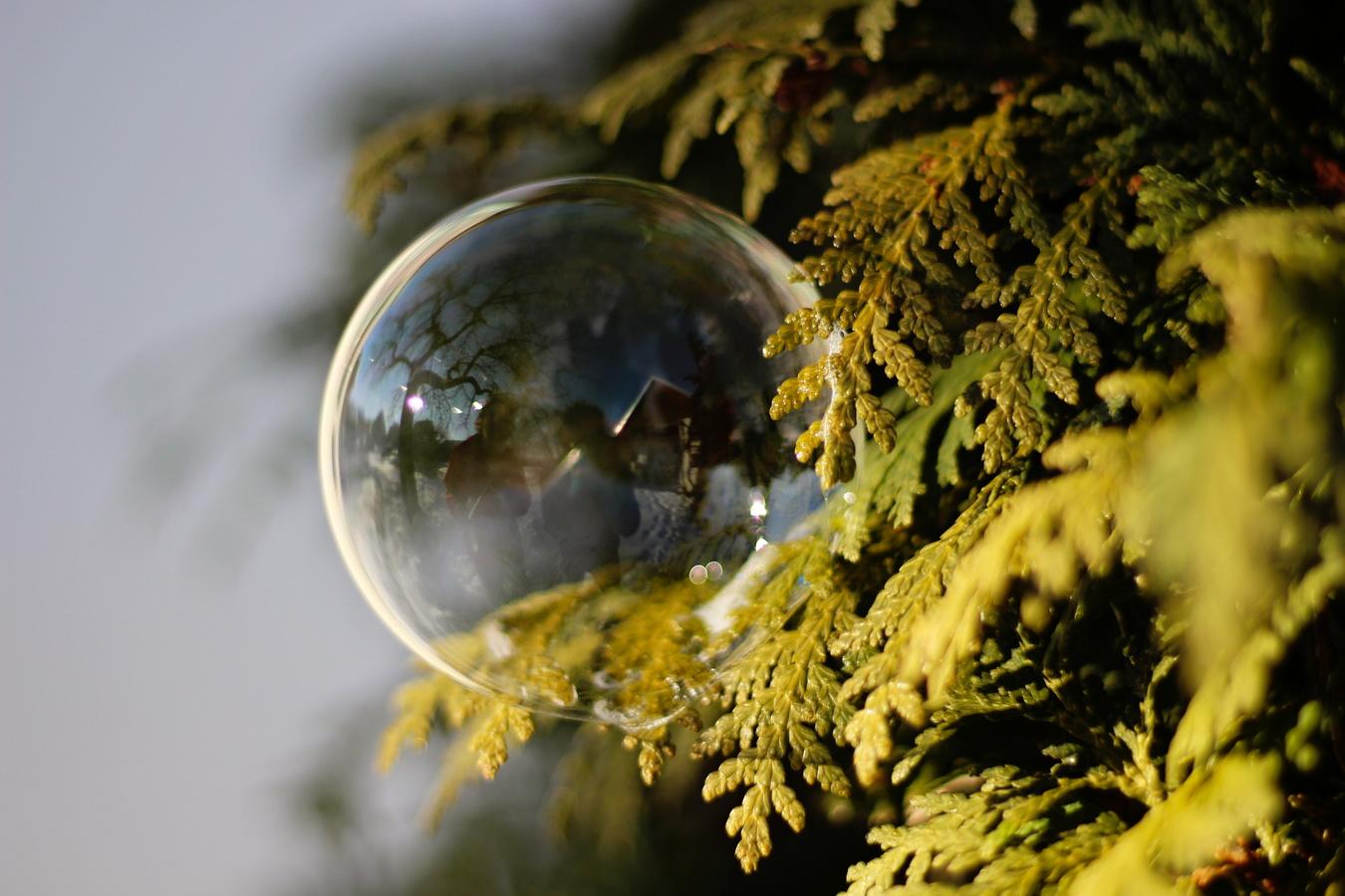 Bublino, kdo se v tobě odráží?