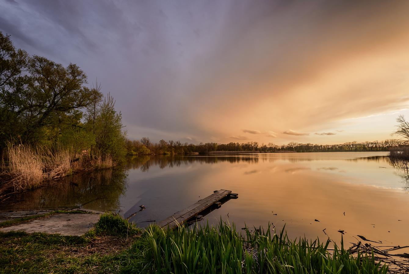 Oderská rybníkovka