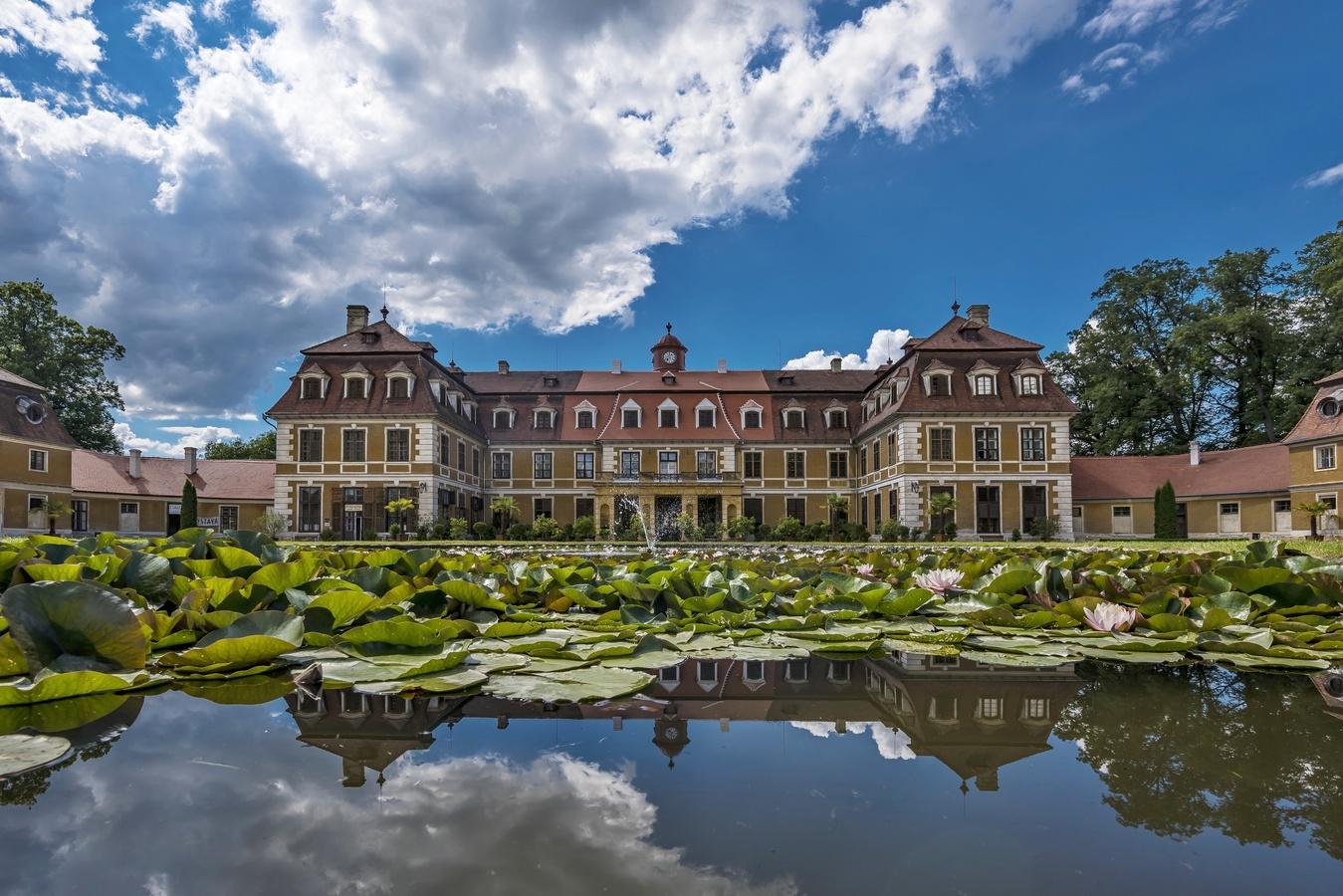 Lekníny v Rájci