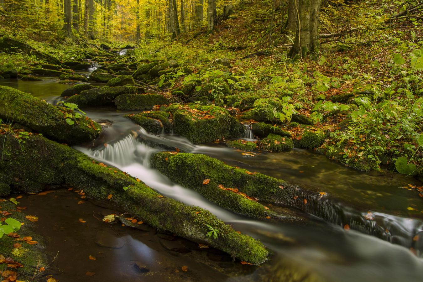 Skalní potok I