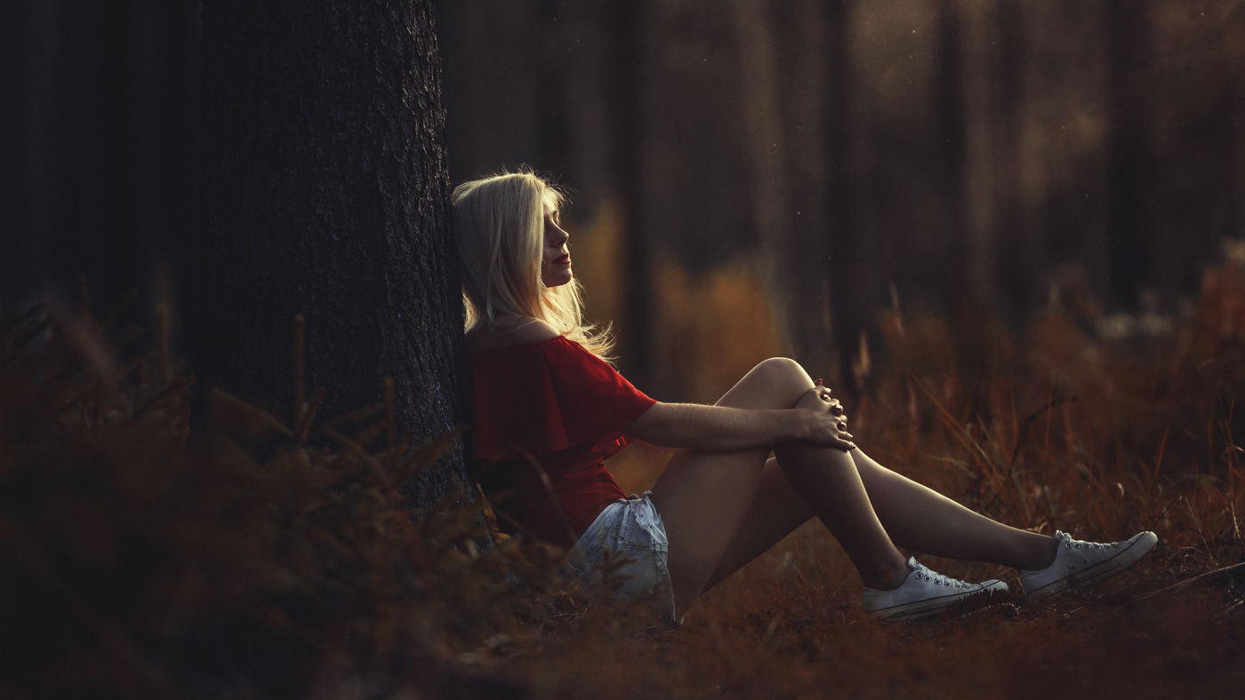 Verča v lese