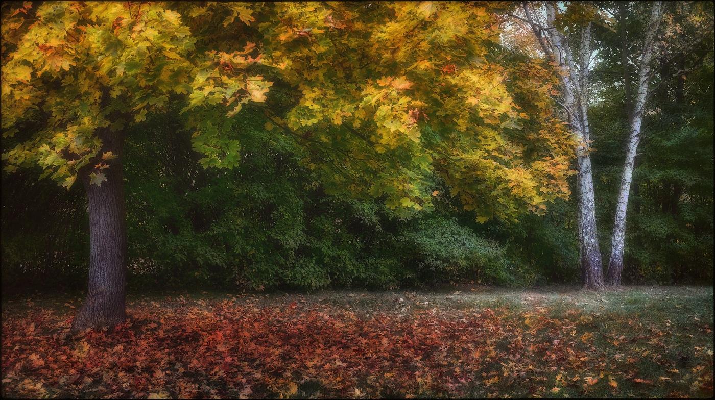 Malířův podzim