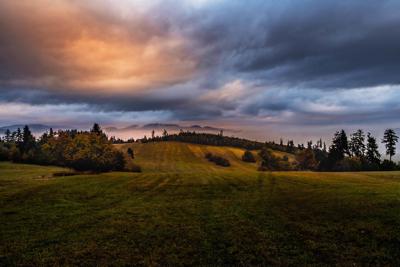 Louky a pastviny Jesenické krajiny