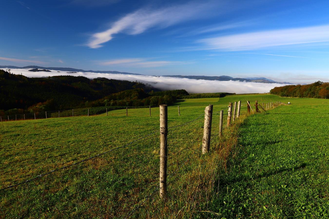 Ranní mlha v Beskydech