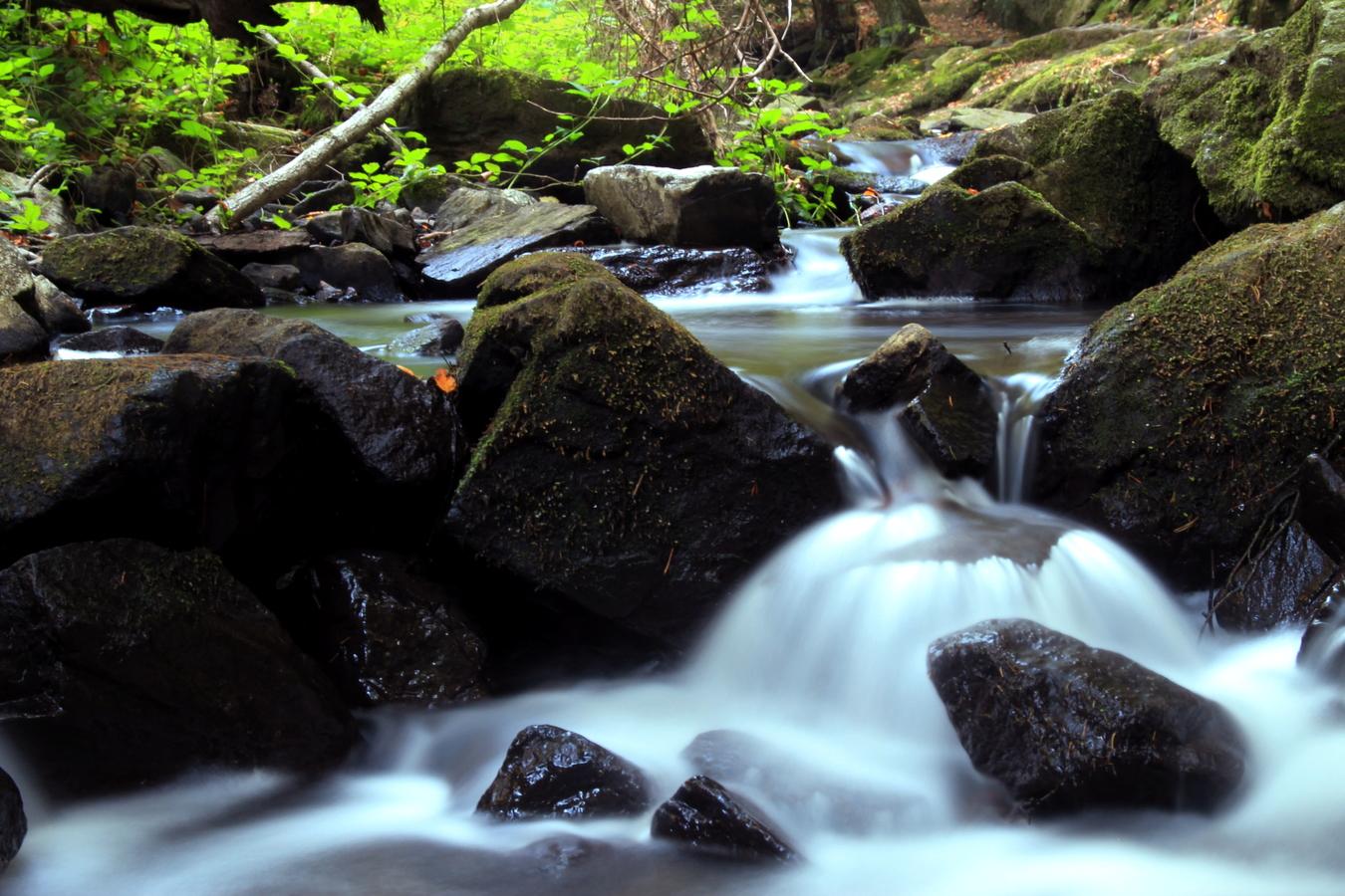 Kameny v mlze