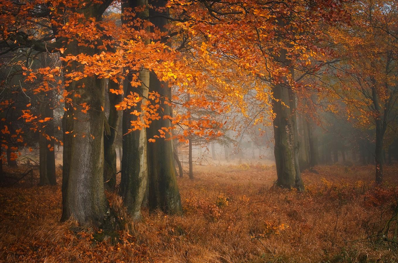 ...podzim Krušný