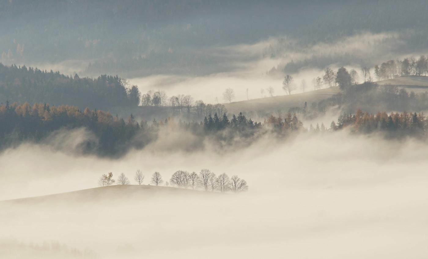 Když se mlha vydaří
