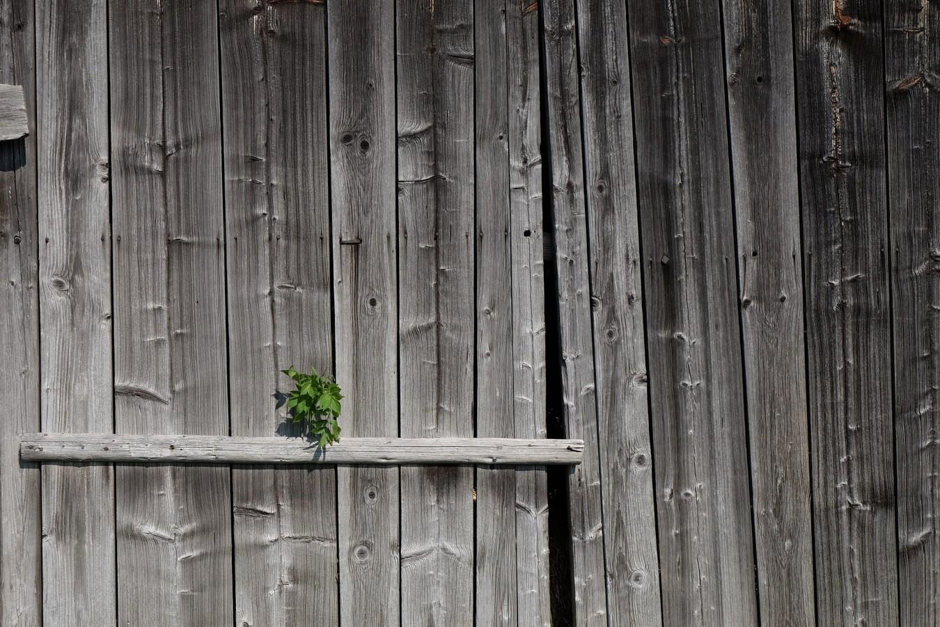 Co skrývají stará vrata