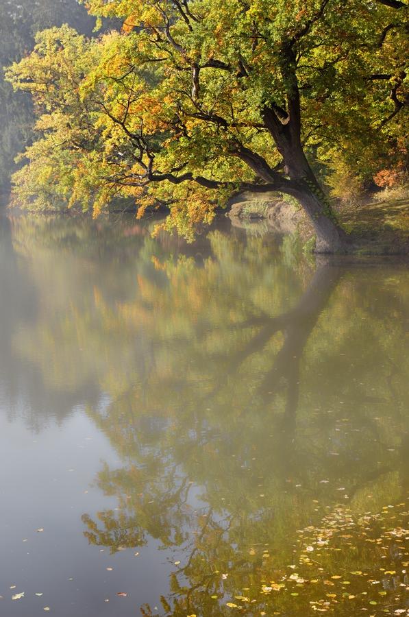 podzimní (II.)