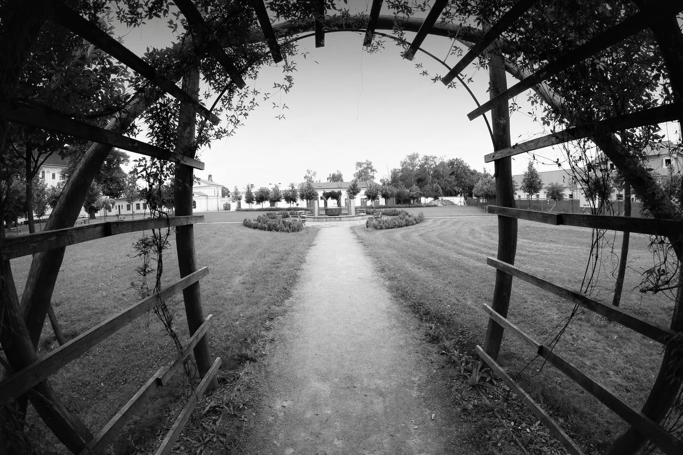Park VNOL