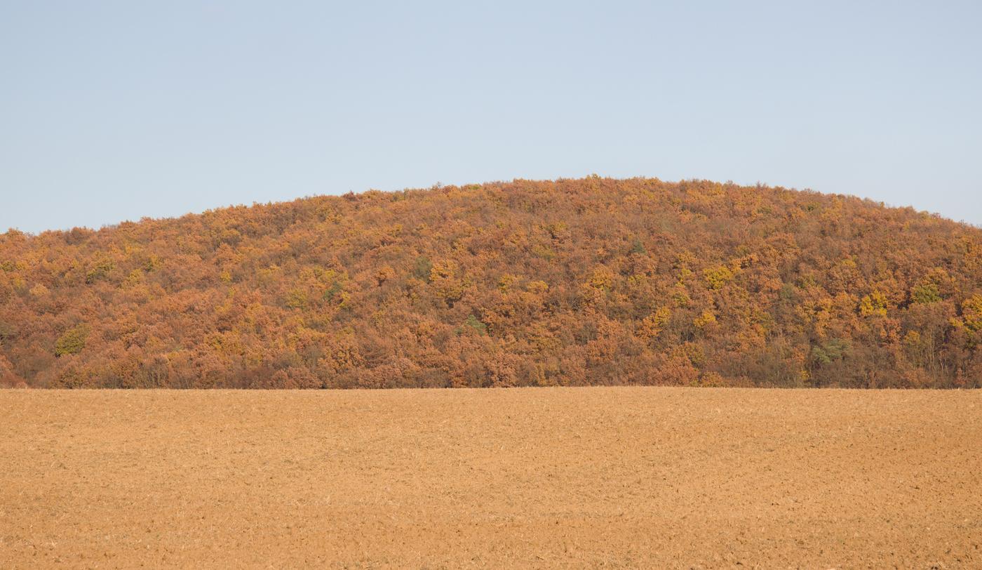 Podzimní trikolóra