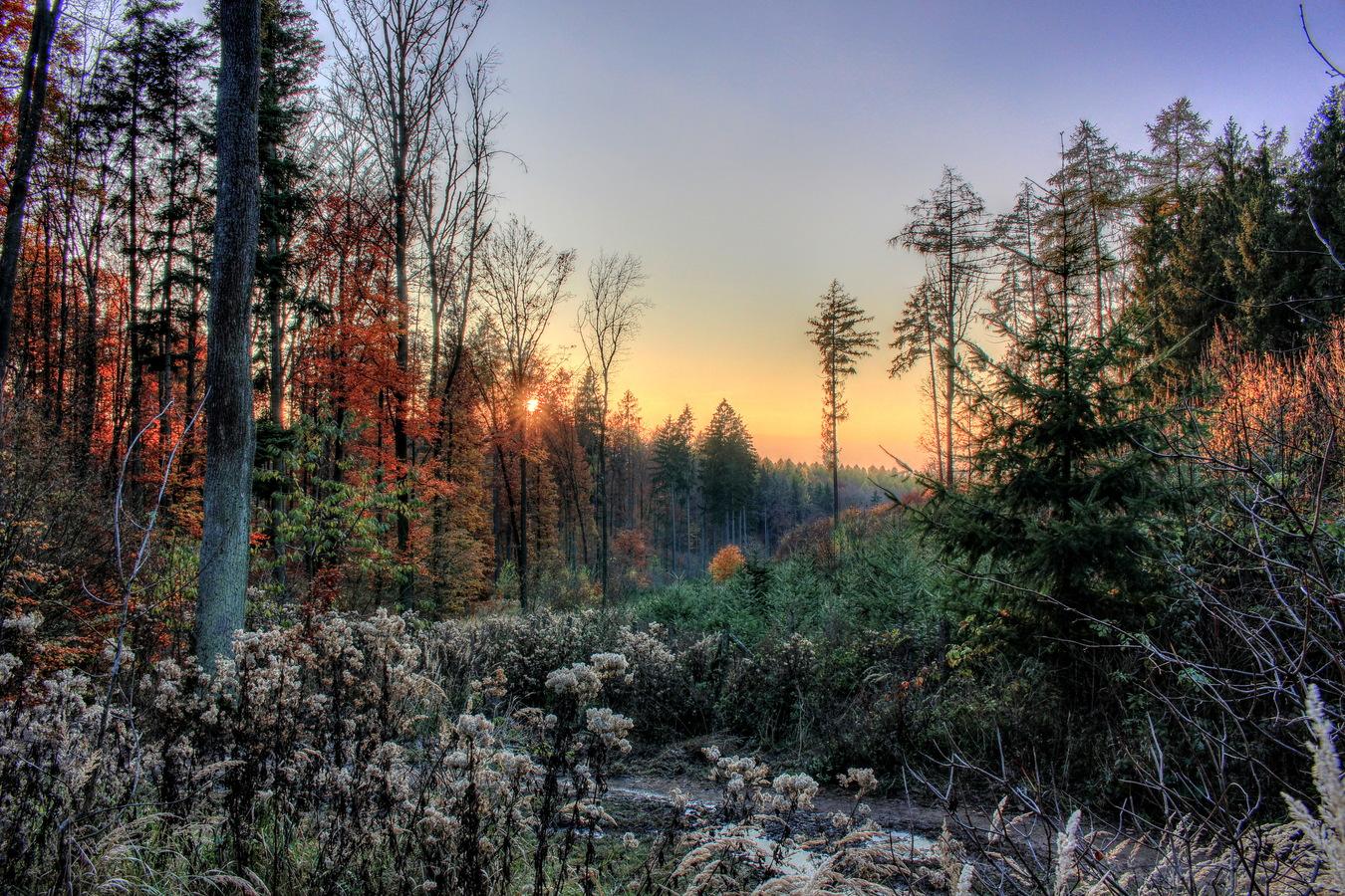 Mrazivý západ sluníčka