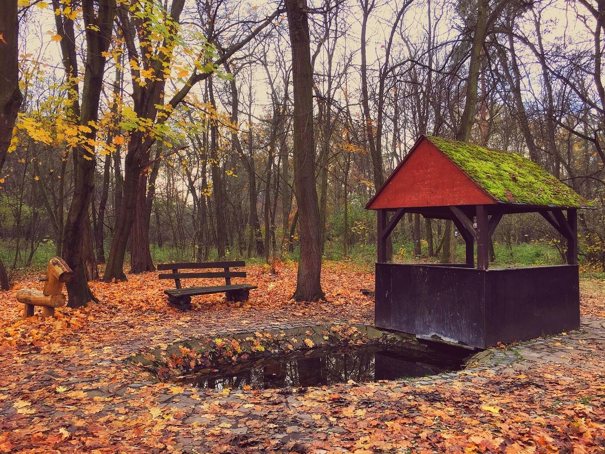 Taková ta podzimní procházka :-)