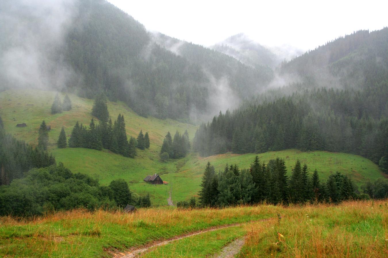 po dešti se v Nzkých Tatrách....