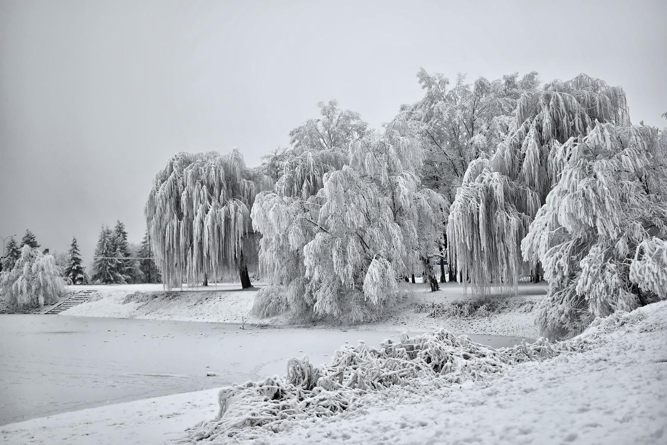 Letošní kouzelná zima