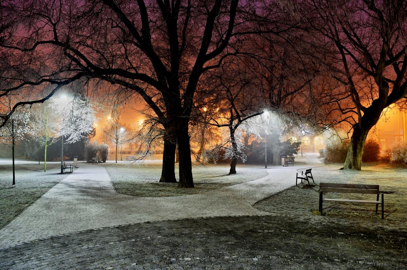 Večerní zamrzlý park