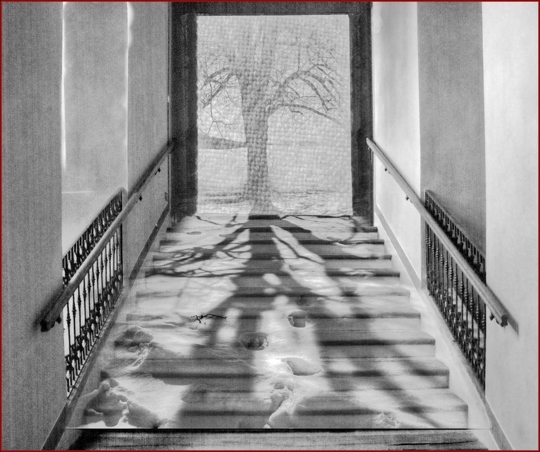 Stín obrazu