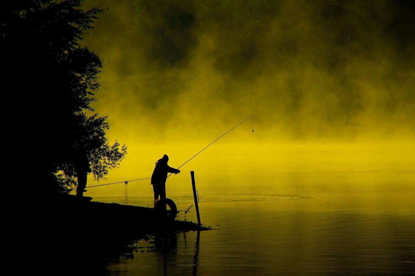 Zlatá rybko, ...