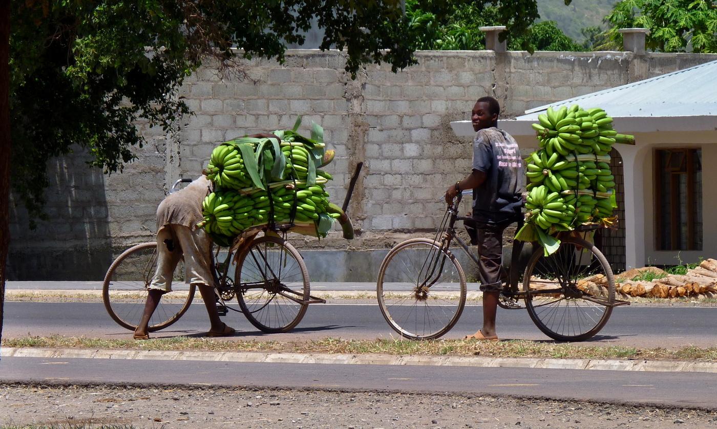 Pozor v Lídlu dnes velká sleva na banány  8+))