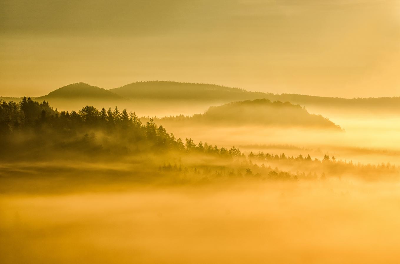 V ranní mlze