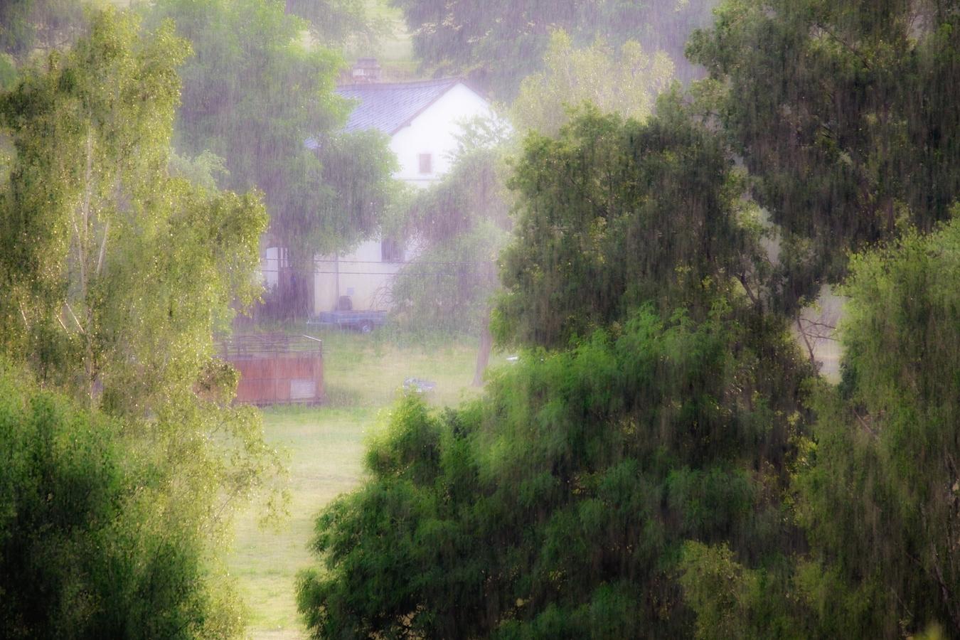 Konečně prší !