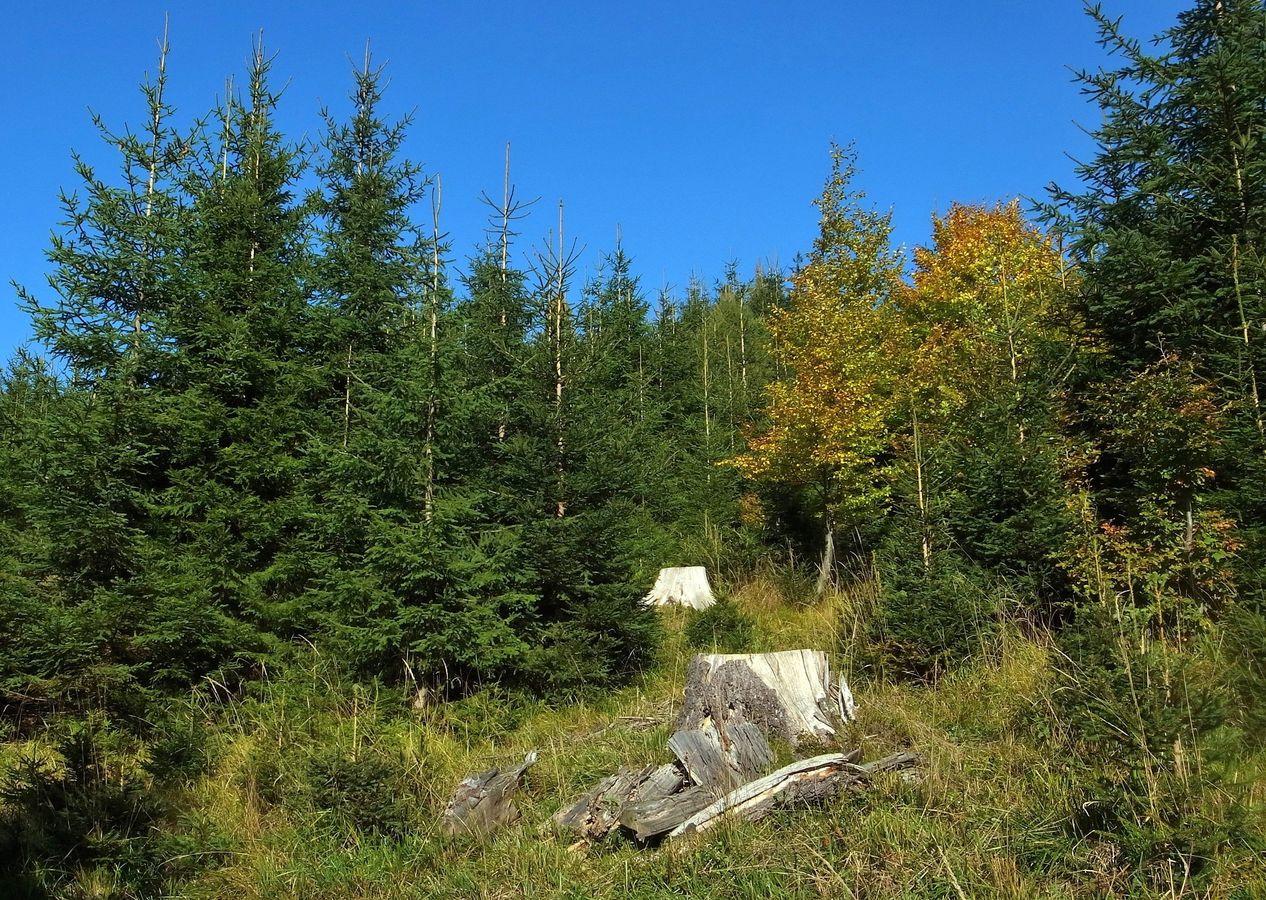 Podzim se vkráda do hor.