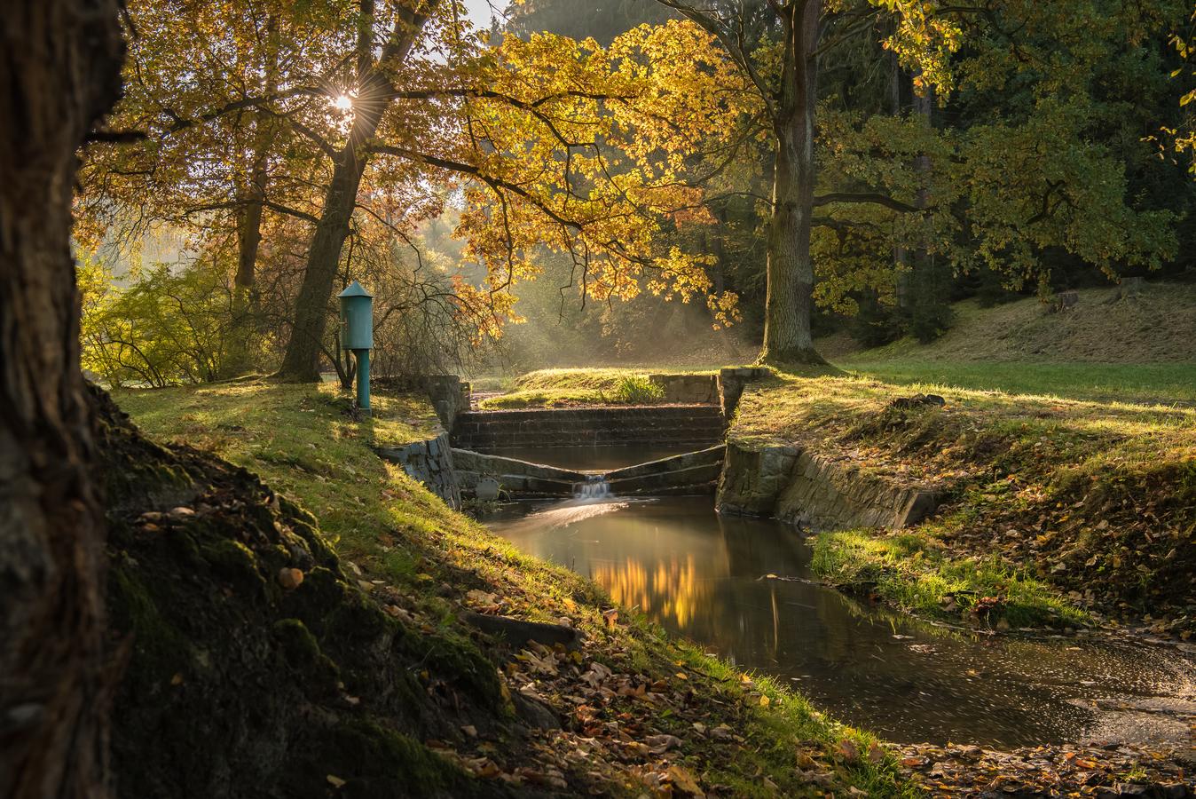 Podzim v Průhonicích.